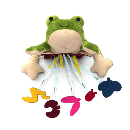 Froggie Lab Dissection product image