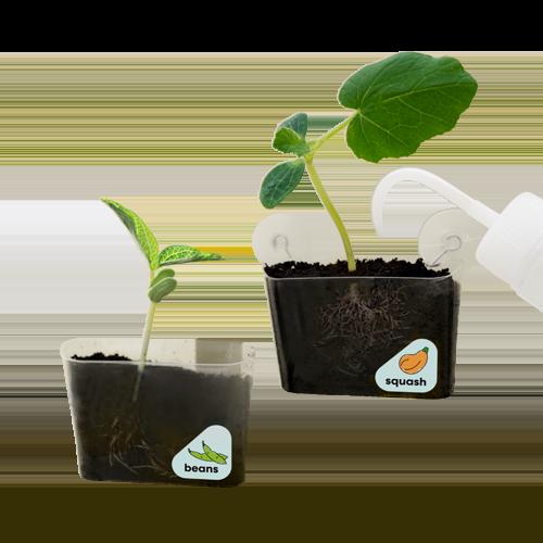 Window Garden product image