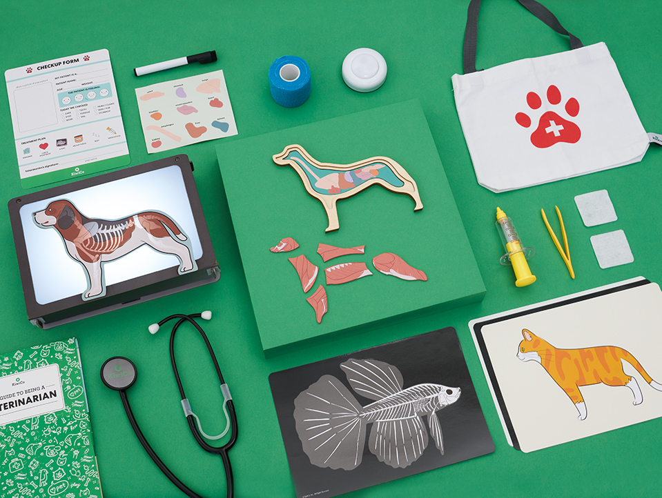 Veterinarian pet kit for kids