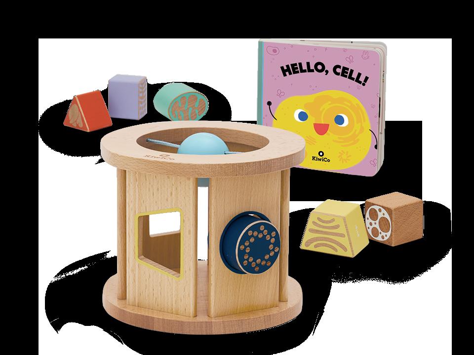 KiwiCo Cell Shape Sorter